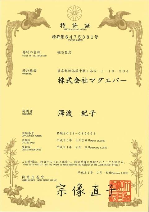 特許第6475381号(磁石製品)